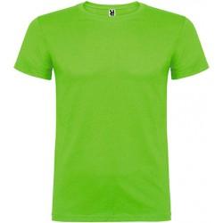 Camiseta Niño Beagle